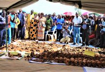 restes humains et les houes trouvés dans des fosses communes exhumés à la province Muyinga